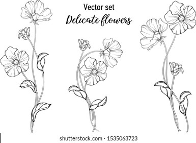 Vector black and white graphic set. Delicate flowers.