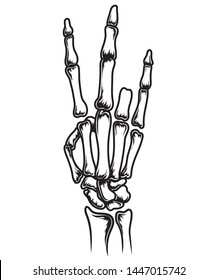 vector black and white hand skull