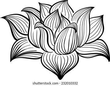 Vector Black and White Lotus flower drawn in sketch style