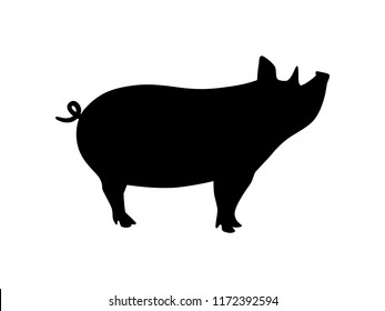 Vector black and white pig silhouette