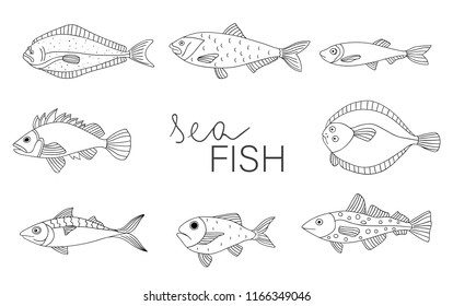 Vector black and white set of fish isolated on white background. Monochrome collection of halibut, rock-fish, mackerel, herring, flatfish, sprat, grouper, cod. Underwater illustration