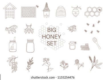 Vector black and white set of honey, bee, bumblebee, beehive, wasp, apiary, meadow flowers, honeycombs, propolis, jar, spoon. Monochrome honey collection isolated on white background
