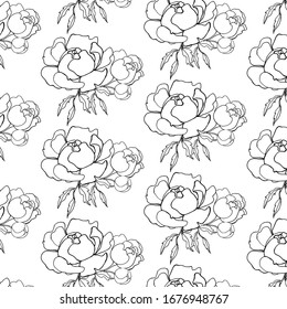 Vector black white simple sketch of peony flowers hand drawing line art nature tattoo petal design pion plant illustration romantic spring summer vector leaf floral garden graphic decoration botanical