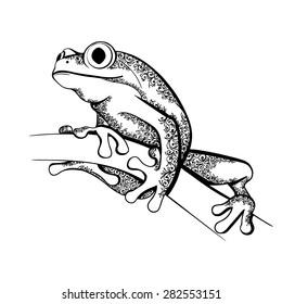 Vector Black and White Tattoo Ornate Frog Illustration