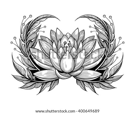 Vector Black White Tattoo Water Lily Stock Vector Royalty Free
