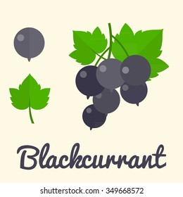 Vector Blackcurrant, flat design