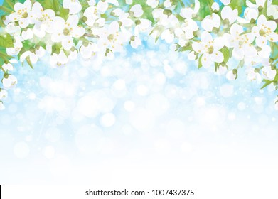 Vector blossoming branches of apple  tree, spring background.