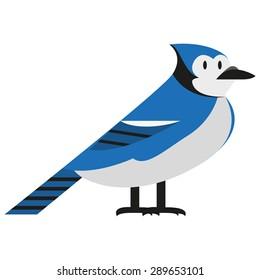 Vector Blue Jay Illustration Isolated On White Background