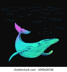 Vector blue whale illustration, ink sketch with big swimming mammal. Isolated whale swimming in the ocean. Hand drawn illustration in abstract childish style.