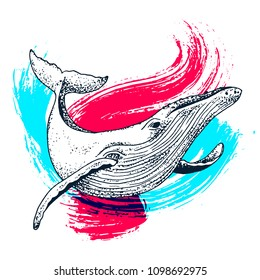 Vector blue whale illustration with paint splash, ink sketch with big swimming mammal. Isolated whale swimming in the ocean. Hand drawn illustration in abstract childish style with watercolour.