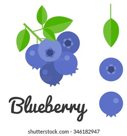 Vector blueberry, flat design