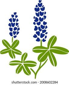Vector bluebonnet flower. Flat illustration. Texas floral symbol