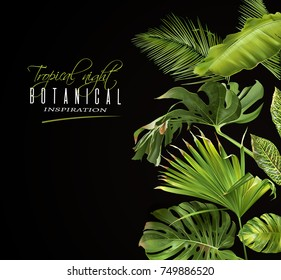 Vector botanical banner with tropical leaves on black background. Design for cosmetics, spa, health care products, travel company. Can be used as summer background