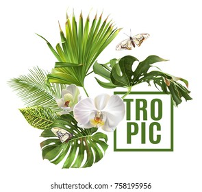 Vector botanical banner with tropical leaves orchid flowers on white background. Design for cosmetics, spa, beauty care products, travel company. Can be used as summer background