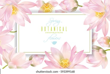 Vector botanical horizontal banner with lotus flowers on white background. Design for natural cosmetics, health care, ayurveda products, yoga center. Can be used as greeting card or wedding invitation