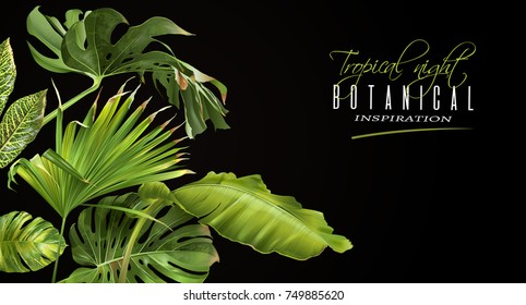 Vector botanical horizontal banner with tropical leaves on black background. Design for cosmetics, spa, health care products, travel company. Can be used as summer background