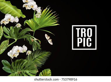 Vector botanical horizontal banner with tropical leaves orchid flowers and butterfly on black. Design for cosmetics, spa, health care products, travel company. Can be used as summer background