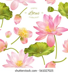 Lotus flower images stock photos vectors shutterstock vector botanical seamless pattern with pink lotus flowers background design for natural cosmetics health mightylinksfo