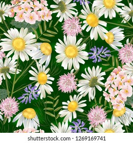 Vector botanical seamless pattern with summer flowers. Modern floral pattern for natural health care products, textile, wallpaper, print, gift wrap, greeting or wedding background.