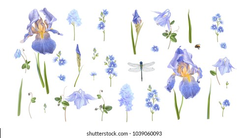 Vector botanical set of blue flowers and dragonfly isolated on white. Floral design elements for natural cosmetics, perfume, women products, greeting card, wedding invitation, spring or summer banners