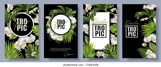Vector botanical vertical banners set with tropical leaves, orchid flowers and butterflies on black. Design for cosmetics, spa, health care products, travel company. Can be used as summer background