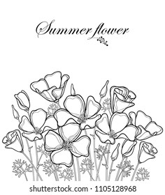 Vector bouquet of outline California poppy flower or California sunlight or Eschscholzia, leaf, bud and flower in black isolated on white background. Contour poppy for summer design or coloring book.