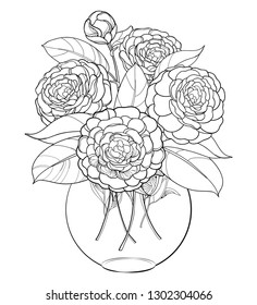 Vector bouquet with outline Camellia flower bunch, bud and leaf in round vase in black isolated on white background. Ornate evergreen plant Camellia in contour for summer design or coloring book.