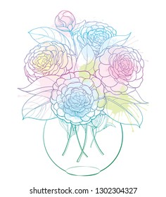 Vector bouquet with outline Camellia flower bunch, bud and leaf in round vase in pastel blue and pink isolated on white background. Ornate plant Camellia in contour style for summer design.