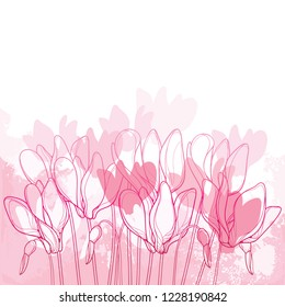 Vector bouquet with outline Cyclamen or Alpine violet flower bunch and bud in pink on the pastel textured background. Perennial Alpine mountain flowers in contour style for spring design.