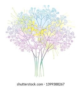Vector bouquet of outline Gypsophila or Baby's breath flower bunch and bud in pastel pink and blue isolated on white background. Ornate contour Gypsophila branch for summer design.