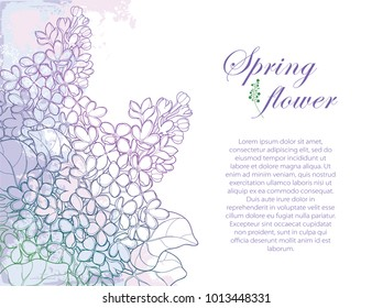 Vector bouquet with outline Lilac or Syringa flower, bud and ornate leaf on textured background in purple pastel colors. Greeting corner composition of Lilac bunch in contour style for spring design.
