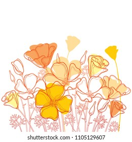 Vector bouquet with outline orange California poppy flower or California sunlight or Eschscholzia, leaf and bud isolated on white background. Ornate contour poppies for enjoy summer design.