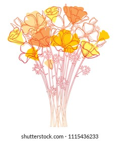 Vector bouquet with outline orange California poppy flower or California sunlight or Eschscholzia, leaf and bud isolated on white background. Ornate contour orange poppies for enjoy summer design.