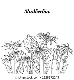 Vector bouquet with outline Rudbeckia hirta or black-eyed Susan flower, ornate leaf and bud in black isolated on white background. Contour Rudbeckia bunch for summer design and coloring book.