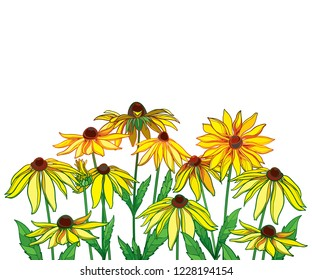 Vector bouquet with outline Rudbeckia hirta or black-eyed Susan flower, green leaf and bud in yellow isolated on white background. Contour ornate Rudbeckia bunch for summer design and coloring book.