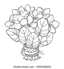 Vector bouquet with outline Saintpaulia or African violet flower and leaf in black isolated on white background. Viola flower in contour for floriculture, greeting summer design or coloring book.