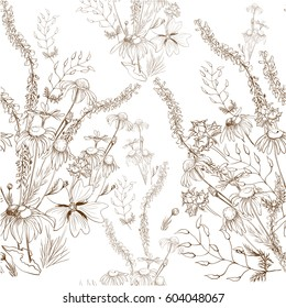 Vector. A bouquet of wild flowers and herbs, chamomile, peas. Background image. Wallpaper. Use printed materials, signs, items, websites, maps, posters.