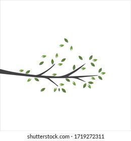 Vector branch , Hand drawn illustration of tree branch design template