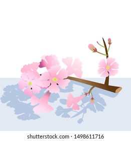 vector branch pink trumpet tree, beautiful pink flower in park