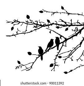 vector branches with birds