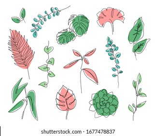 Vector branches and leaves. Сontinuous line leaves print tropical palm, eucalyptus, monstera, succulent, house plants. Abstract botanical set of line leaves. Tropical jungle leaves and various shapes.