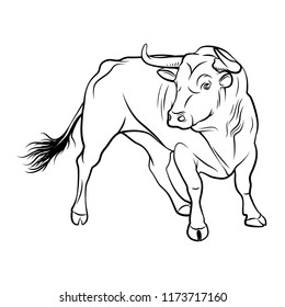 Vector Bull. A outline illustration on a white background