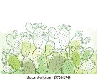 Vector bush of outline Indian fig Opuntia plant or prickly pear cactus, fruits and spiny stem on the pastel green and white background. Ornate contour Opuntia oval segments for desert summer design.