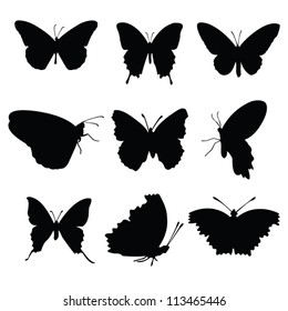 Vector butterflies collection black silhouettes on white background