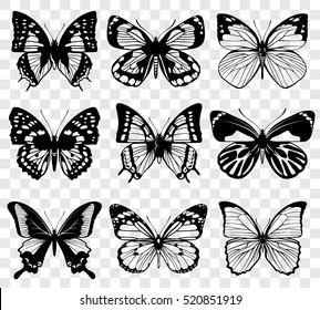 Vector butterflies isolated on transparent checkered background