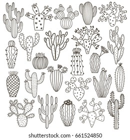 Vector cactus set isolated on white. Cacti hand drawn doodle illustration