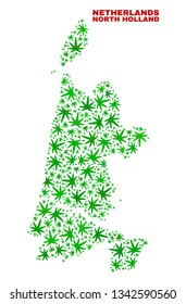 Vector cannabis North Holland map collage. Concept with green weed leaves for cannabis legalize campaign. Vector North Holland map is constructed with weed leaves.