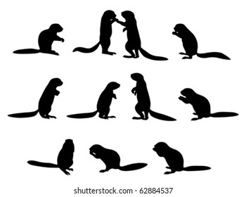 vector cape ground squirrel silhouettes (Xerus inauris) on white background