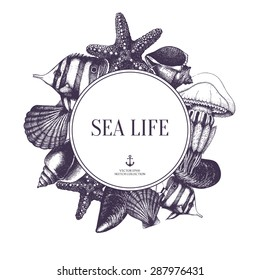 Vector card design with hand drawn small fish, sea shells, sea star and jellyfish sketch.