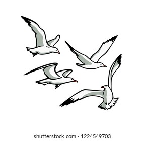 Vector card with  hand drawn flying seagulls. Ink drawing, beautiful animal design elements.